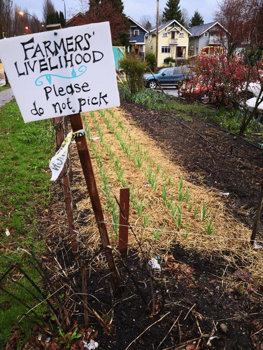 Photo Credit: Farmer's Livelihood by Nat Wilson via Flickr (CC BY SA, 2.0 License)