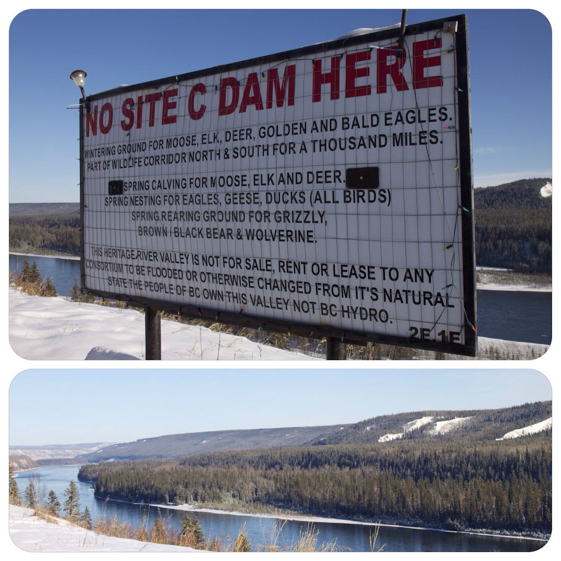 No Site C Dam Here by Jerry (CC BY SA, 2.0 License)