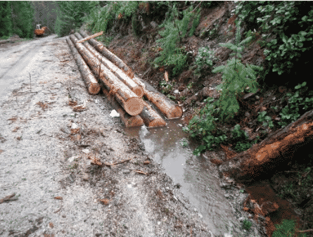 """Photo 11 from the Madrone Report. """"This should not happen in a sensitive watershed providing drinking water"""""""