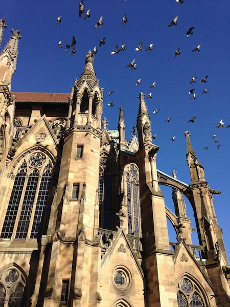 Pigeons flying over the church at Stuttgart-West, Stuttgart, Baden-Wurttemberg by Dirk Haun via Flickr (CC BY SA, 2.0 License)
