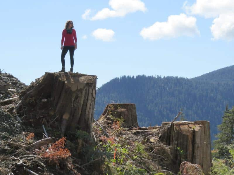 The Wilderness Committee's Emily Hoffpauir in a new old-growth clearcut, logged this winter by Teal Jones. The unprotected Central Walbran Valley is in the background. (Torrance Coste)