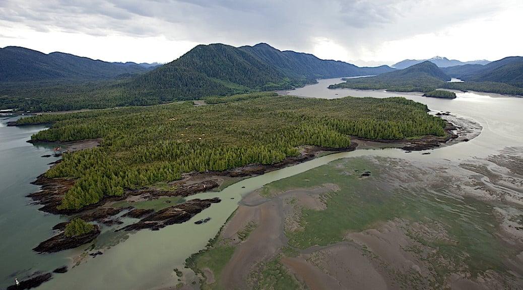 Photo of Lelu Island Courtesy Skeena Watershed Conservation Coalition
