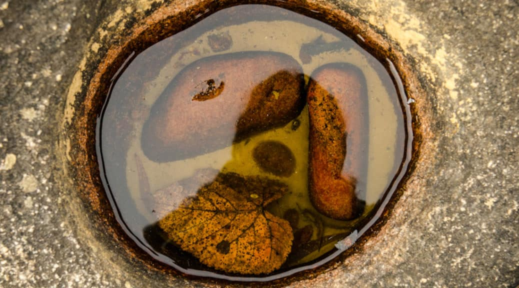 Stone Soup by Jen Lemen via Flickr (CC BY SA, 2.0 License)