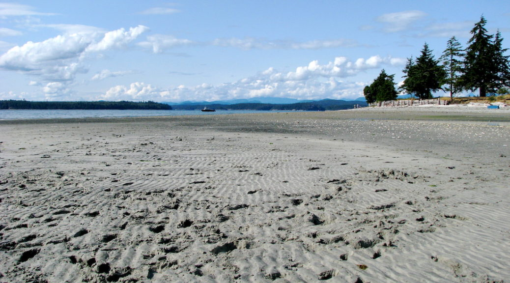 Cortes Island Grants-in-aid approved