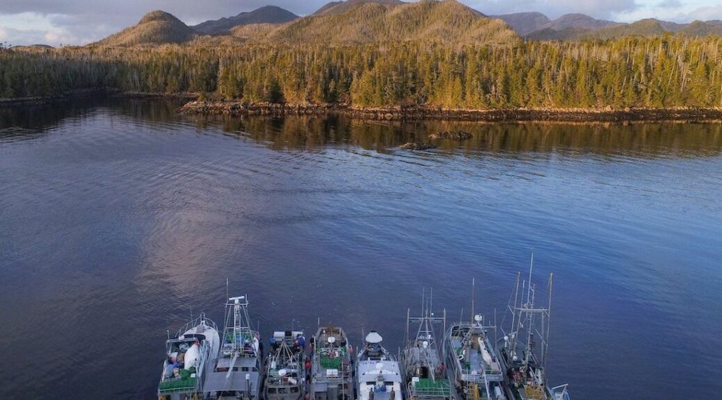 BC's Seafood Industry