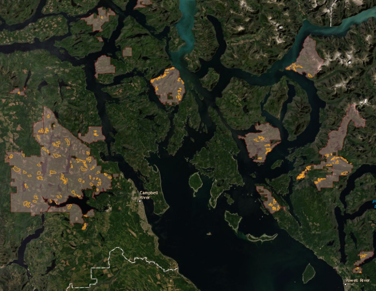 Tracking BC Timber Sales