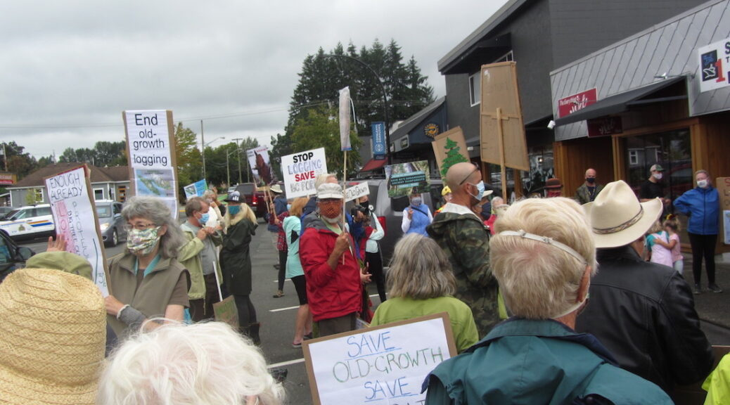 Courtenay Old Growth Logging protest