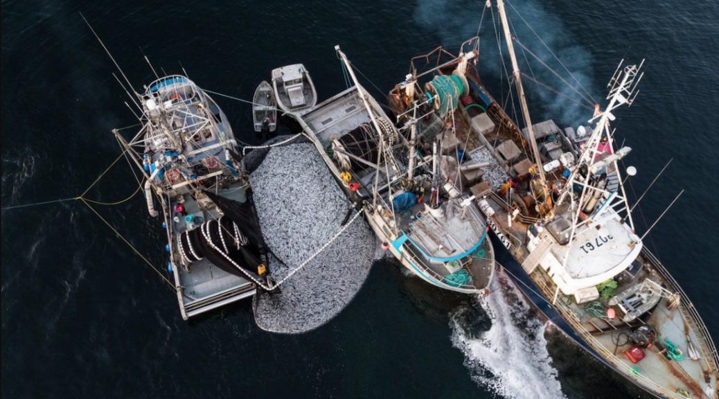 Closing fisheries