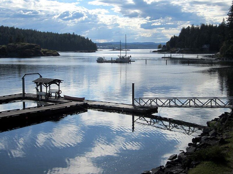 What is COVID's impact on local tourism to Quadra Island?