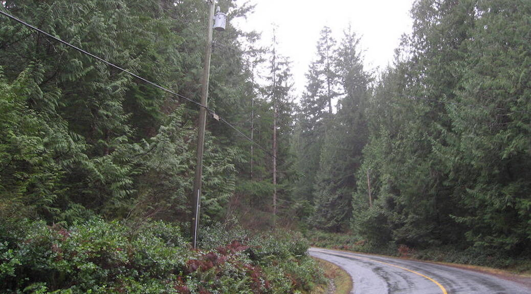 peculiarities of the Cortes Island electric grid