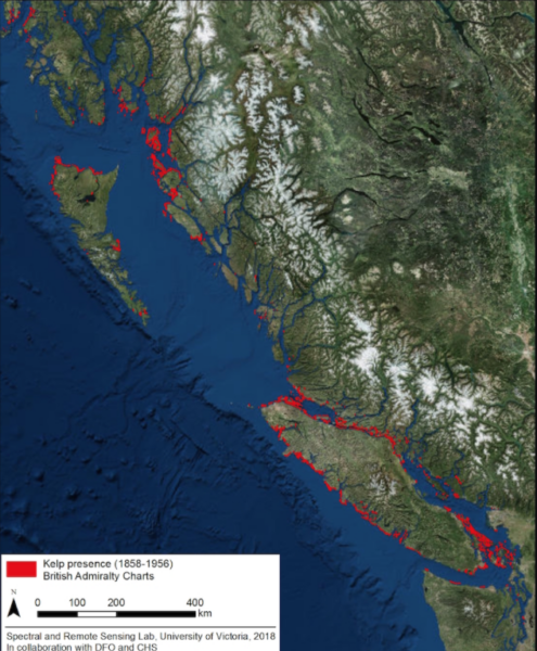 1858-1956 map showing kelp beds