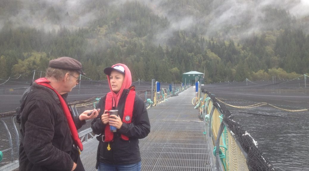 Roy L Hales interviewing Katherine Dolmage, Certification Manager from Marine Harvest Canada (MHC), at the Philips Arm Salmon Farm