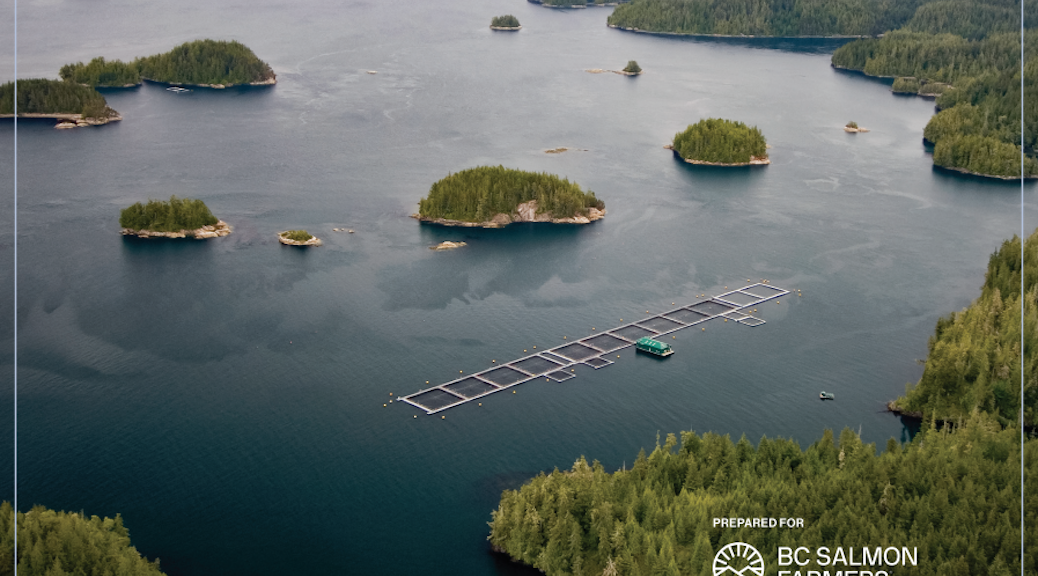 (Cover) Consequences of the decision to shut down salmon farming in the Discovery Islands