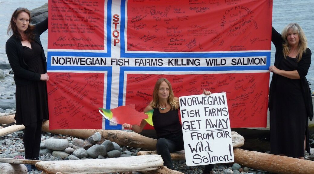 Norwegan fish farm picture