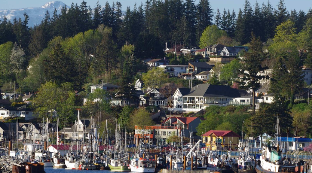 fishing boats in front of city residences in Campbell River